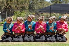 Indonesia-Emerging-3467 (jessdunnthis) Tags: indonesia australia design art futures peacock gallery emerging dance suara indonesian australian collaboration multiculturalism auburn