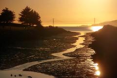 As sunlight and water recede (TJ Gehling) Tags: lowtide sunset sanfranciscobay goldengatebridge goldengate hoffmanchannel isabel pointisabel pointisabelregionalshoreline ebparksok richmondca