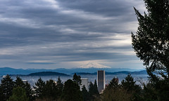 Downtown (Aaron Fredericy) Tags: oregon pacificnorthwest portland northwest outdoor nature natural landscape downtown city skyline mounthood mountains tree trees clouds sky buildings fog