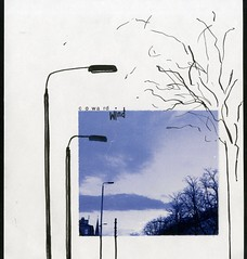(Olivia Dunbar Scott) Tags: arty composition artistoftheday photooftheday environment communication blue blacknwhite pen photography collage media mixed design illustration art linear typography type monochrome street glasgow cold winter brisk trees lamppost