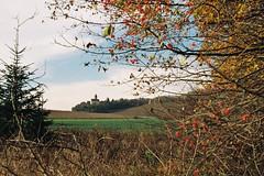Herbstlicher Durchblick (alf sigaro (temp. abs.)) Tags: pentona kw trioplan meyeroptik vebfeinoptischeswerkgrlitz fog badenwrttemberg schlossstocksberg stockheim
