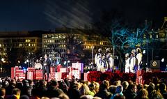 2016.12.01 Christmas Tree Lighting Ceremony, White House, Washington, DC USA 09296