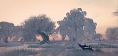 Dawn brings colour (CeCeGy) Tags: second life secondlife sl winter cold snow winterscene dawn frisland