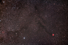 Cocoon Nebula Region (Regulus12) Tags: stars astrophotography astronomy nightsky modded ic5146 canon60d cocoonnebula astrotrac astrometrydotnet:status=solved lpsp2 astrometrydotnet:id=nova1243871