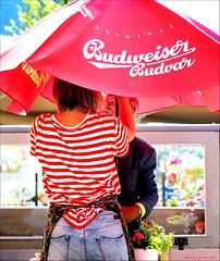 Sunscreen Sunset (Emil de Jong - Kijklens) Tags: red sun café restaurant sunshade parasol shade alkmaar budweiser rood zon kerk grote zonnescherm rouce kerkplijn