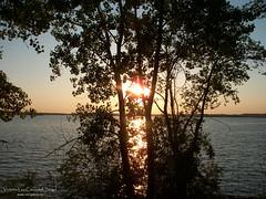 "Lake Tsuchida Sunset 5 (VL Croasdell) Tags: park county trees sunset sky sun lake water clouds rural twilight scenery dusk grant country north prairie dakota northdakotanature northdakotaheaven nd2015contest ""nd2015contest"" mrisar"