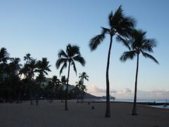 (procrast8) Tags: beach sunrise island hawaii bay waikiki oahu head diamond crater hi honolulu kahanamoku
