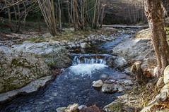 El Arnera (SantiMB.Photos) Tags: winter espaa ro river geotagged invierno esp cataluna maanetdecabrenys 2tumblr sal18250 arnera 2blogger geo:lat=4236754762 geo:lon=276753363