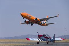 Mango B737 800 (1) (Indavar) Tags: plane airplane airshow chipmunk mustang albatros rand beech at6 radial an2 p51 l39 antonov dc4 dhc1 beech18 t28trojan b378