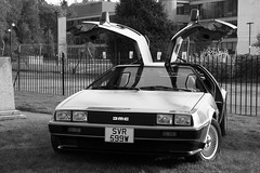 1981 DeLorean (davocano) Tags: brooklands autumnclassicbreakfast svr599w