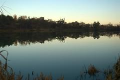 An Autumn Lake (Series) (melleus) Tags: autumn trees sunset sky lake reflection green nature water yellow season outdoors mirror evening cool nikon imagemagick dcraw