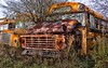McLean's XX (martinaschneider) Tags: old trees fallleaves ontario bus tree fall abandoned grass rust schoolbus hdr rockwood wreckers mcleans