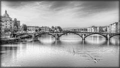 Firenze # 1 (celestino2011) Tags: fiume hdr vogatori top20bridges