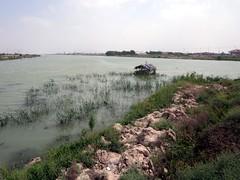 Shatt Al Arab (D-Stanley) Tags: shattalarab tigris euphrates querna iraq mesopotamia rivers