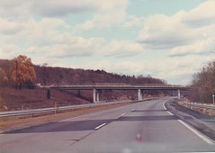 THE NY STATE THRUWAY IN 1984 (richie 59) Tags: newyorkstate newyork unitedstates autumn albanycountyny albanycounty interstatehighway richie59 overpass america outside fall newyorkstatethruway thruway interstate87 oldphotograph olddays oldphoto 1984 photoscan nov171984 nov1984 35mmfilm 35mm filmcamera filmphotography film i87 1980s hudsonvalley nystate nys ny usa us dividedhighway concretehighway highway freeway road tollroad roadway trees guardrails patched cracks weeds