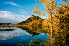 Beginning of Fall (Gary.Lamprecht) Tags: canont6s fall foliage backwaters mississippiriver topaz lacrosse