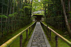 Path to the temple (Tim Ravenscroft) Tags: path fence moss woodland kotoin daitokuji kyoto japan
