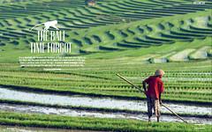 The Bali Time Forgot (@Mark_Eveleigh) Tags: indonesia west bali secret spots travel magazine writer journalist