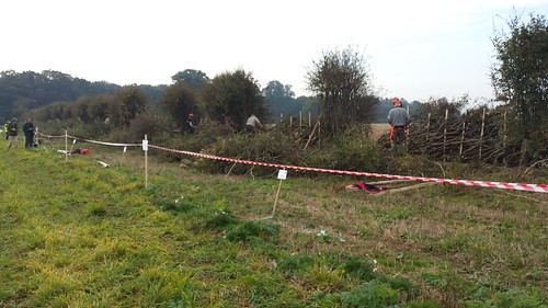 National Hedgelaying Championships - Aldford Farm, Aldford, Chester, Cheshire - 22-10-16 (10)