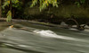 (Attila Pasek) Tags: branch longexposure longexposuretime stream water
