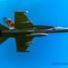 VAQ-129 CAG Bird Against the Blue