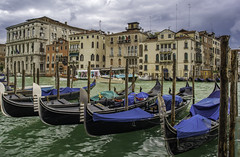 Moored Gondolas, Grand Canal