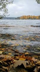 Sweden in Autumn (krysyjane) Tags: autumn leaves water lake lgg3 lg g3 colours sweden stockholm