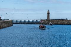 lifeboat (pamelaadam) Tags: thebiggestgroup fotolog digital sea people lurkation boat summer 2016 holiday2016 whitby engerlandshire august