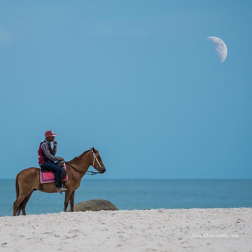 Thinking about the moon on a horse. Hua Hin beach resort , Thailand I shot this picture  with my Sony A7R2 and Sony G lens 70-300mm #horse #horses #moon #halfmoon #bay #ocean #seaside #seashore #thailand #huahin #resort #beach #sea  #photography #sony #so