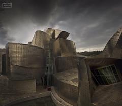 La cara oculta/ The dark side (Jose Antonio. 62) Tags: spain espaa bilbao building edificio architecture arquitectura clouds nubes gugenheim