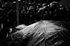 . (Thorsten Strasas) Tags: abtreibungen berlin blackmonday czarnyponiedzialek czarnyprotest feminismus frauenrechte friedrichshain fundamentalismus kirche kreuzberg kundgebung pis poland polen rede regenschirm schild transparent warschauerbruecke abortion banner blackprotest church feminism fundamentalism mybodymychoice protest rally religion repeal sign speech umbrella womensrights germany de schwarzweis