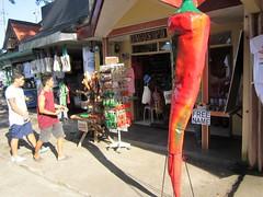 RED PEPPER (PINOY PHOTOGRAPHER) Tags: daraga albay bicol chili red pepper bicolandia luzon philippines asia world sorsogon