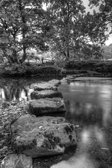 Wharfedale Stepping Stones (717Images) Tags: steppingstones river wharfe yorkshire dales nationalpark crossing landscape