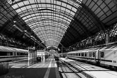 Frankfurter Hauptbahnhof (Lothar Drewniok) Tags: lothardrewniok lichtundschatten frankfurtammain germany alemania architektur schwarzweis sw blackandwhite bahnhof frankfurterhauptbahnhof