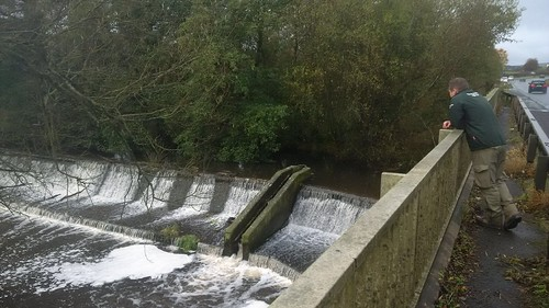 River Teme Salmon Protection 12th November 2016