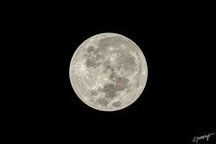 Not So Super, SUPER MOON! (IMG_0763) (Mr. iNfEk) Tags: supermoon ewabeach hawaii unitedstates us canon 5d4 5dmarkiv 5dmkiv 560mm 20x 14x 70200l hst 3am luna moon detail iroquois iroquoispoint