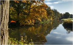 """""""Reflection of colors"""", Netherlands (CvK Photography) Tags: autumn autumncolors canon color cvk europe fall forrest landscape nature netherlands overijssel reflection twente denekamp nederland nl"""