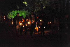 La-magia-del-bosco-di-notte-2016-50