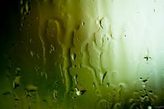 _hOpe_ (iggyshoot) Tags: rain drop abstract art artistic goutte pluie water wet eau green vert blackandgreen color colour moody nikon d610 reflex