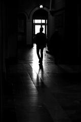 coming (O.Krüger) Tags: niedersachsen deutschland hannover rathaus streetphotography sw schwarzweis socialdocumentary streetlife monochrom bw bianconero blackwhite silhouette peopleinthecity people urban ngc