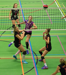 1B261031 (roel.ubels) Tags: vv utrecht eurosped galgewaard volleybal volleyball 18 finale nationale beker