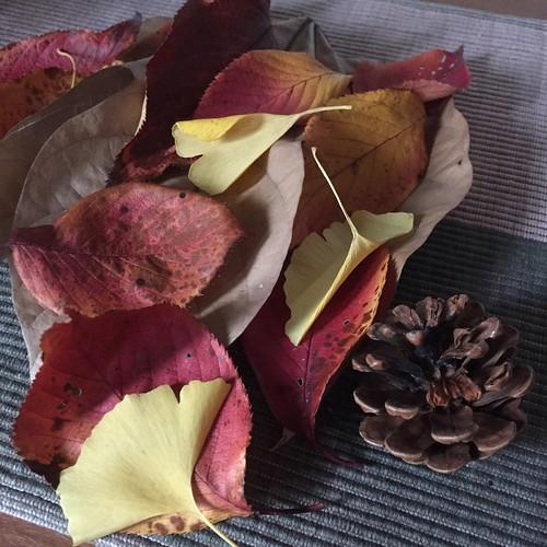 枯れ葉のオブジェ
