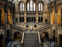 PB050270 (marcel_reimann) Tags: london england vereinigtes knigreich gb olympus epl7 lightroom light vereinigtesknigreich naturalhistorymuseum stairs architecture
