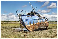 Boat at Sunderland Point (Digital Wanderings) Tags: old boat seagull rusty lancashire will wreck saltmarsh sunderland overton morecambebay heysham sunderlandpoint lancashirecoast