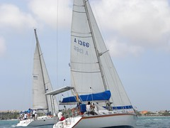 261-DSCN9906 (eric15) Tags: sea beach water race cat for boat eva surf sailing wind offshore sailors luna aruba international dash sail regatta sailor optimist sunfish oranjestad surfside