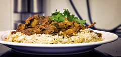 On My Plate (Day 24) (.::Prad Patel::.) Tags: food chicken photography dish rice indian madras plate meal coriander
