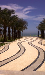 Waves (Wendy Parker) Tags: china trees sea beach lines waves path curves perspective shapes curvy palm straight fujian wavy dongshan
