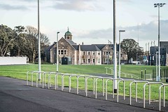 A VISIT TO GRANGEGORMAN COLLEGE CAMPUS [CANON EF 100-400 L IS LENS MOUNTED ON SONY ILCE-A7RM2]-110008