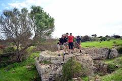 DSC_0861 (caterinaavino) Tags: temple ancient columns classics sicily classical sicilia segesta mozia mothia motya