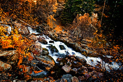 "S Curve Falls (Scott Stringham ""Rustling Leaf Design"") Tags: hello fall nature water canon landscape photography utah photo ut wasatch escape looking desert graphic earth air onceuponatime photograph passion land lookatme dslr lettherebelight bigcottonwoodcanyon stringham wasatchrange wasatchnationalforest getoutside bedifferent bettereveryday buymeabeer scottstringham canon7d rustlingleafdesign rustlingleaf wwwrustlingleafdesigncom"